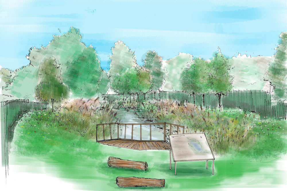 Painting of pond with interpretation board and fencing.