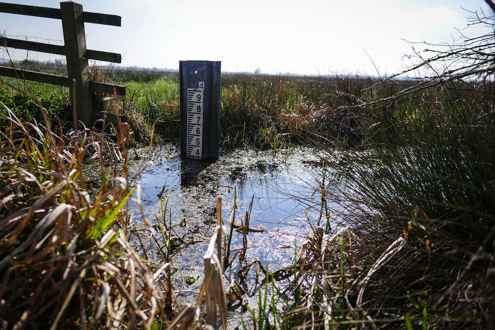 A water depth gauge in water near a fence on Moorlinch.